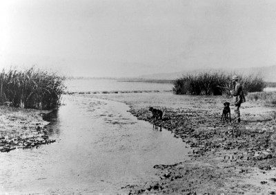 A hunter and his dogs huntng ducks in the 1880s Centinela Creek
